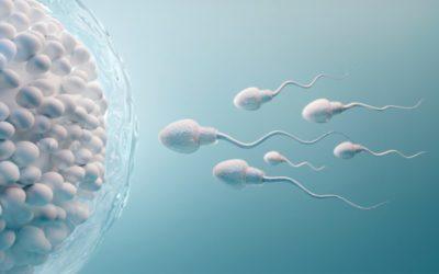 Jak otěhotnět, když se nedaří? – Přirozené otěhotnění